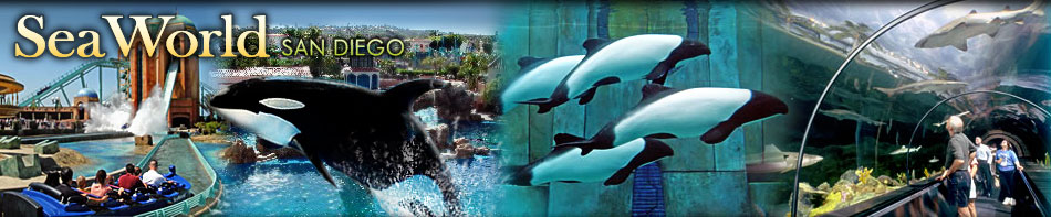 discovery bay california map with Seaworld on Orlando Maps also Seaworld further 374432156492504675 additionally Oregon together with 1263.